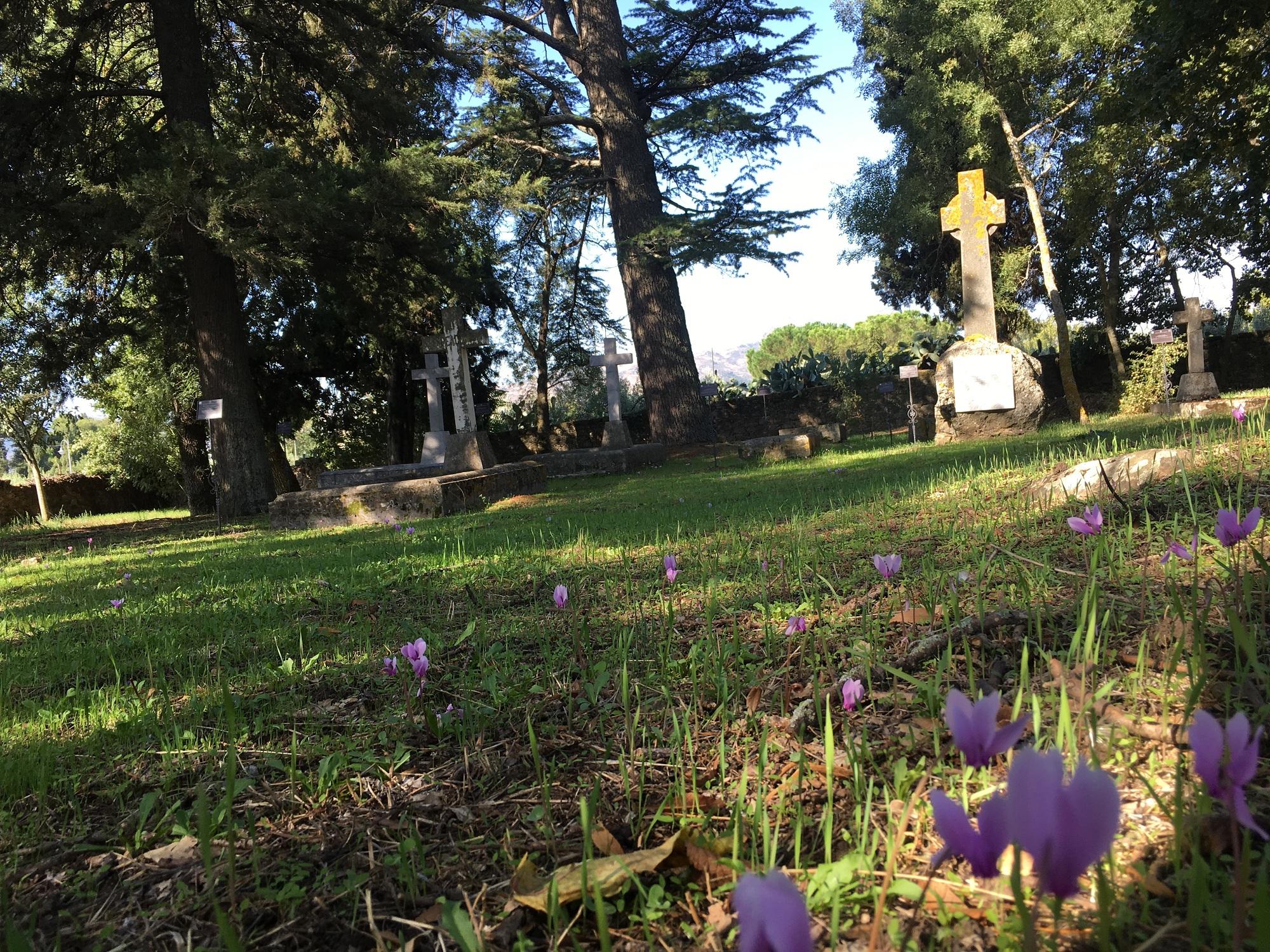 Cimitero Inglese dei Nelson Maniace